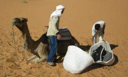 Maroc: Abdoul ghani: Mon ami au grand coeur.