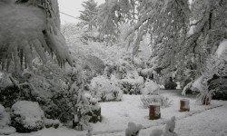 Tombe la neige… a Prechac.